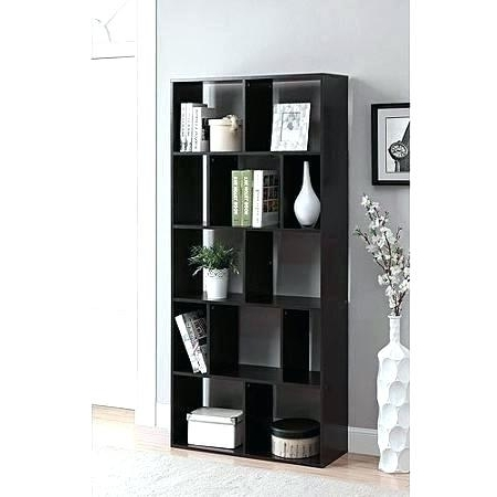 2018 Black Bookcases Walmart For Bookcases Walmart Instructions Black With Glass Doors (View 2 of 15)