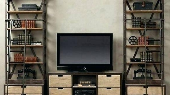 Best And Newest Tv Cabinet Bookcase – Hercegnovi2021 Inside Tv Stand Bookcases Combo (View 3 of 15)