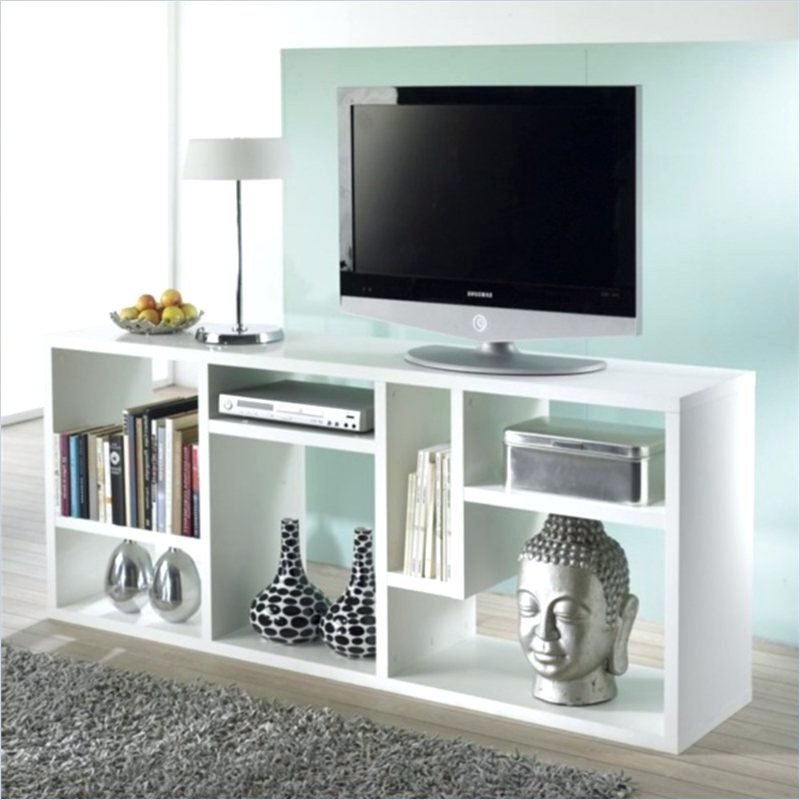 Bookcase ~ Bookcase Tv Stand In White Tv Stand With Bookcases Tv With Regard To Well Known Bookcases Tv Stand (View 15 of 15)