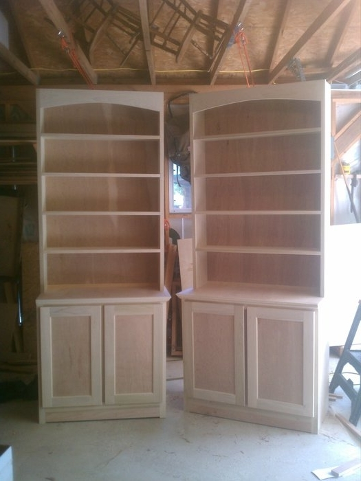 Bookcases And Base Cabinets (View 2 of 15)