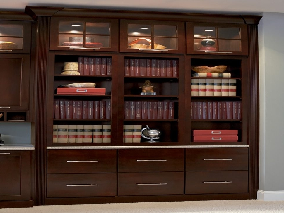 Bookcases With Doors On Bottom With 2017 Bookcases With Doors On Bottom (View 6 of 15)