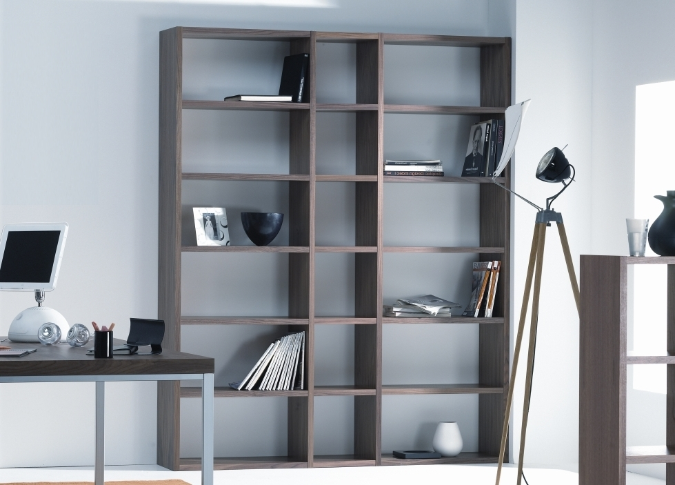 Contemporary Bookcases With Best And Newest Contemporary Bookcases With Drawers — Novalinea Bagni Interior (View 6 of 15)