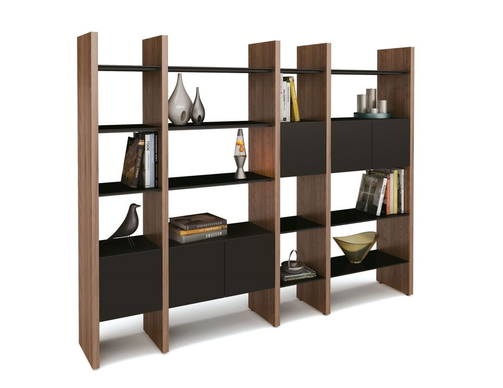 Contemporary Oak Shelving Units With Regard To Well Known Furniture : Captivating Modern Shelving Units With Wooden Divider (View 10 of 15)