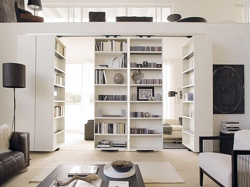 Contemporary Room Divider Bookcases : Modern Contemporary Room Pertaining To 2017 Bookcases Room Dividers (View 8 of 15)