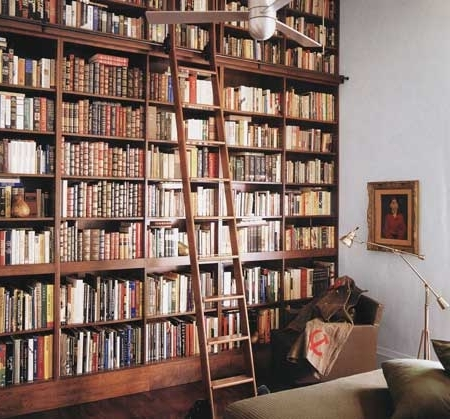Cool Home Library With Ladder Rolling Library Ladder Home Design In Newest Sliding Library Ladder (View 5 of 15)