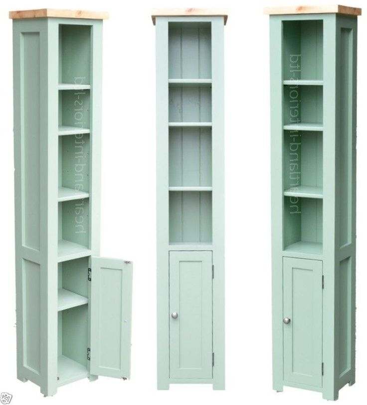 Cupboard Bookcases With Regard To Latest Best 25+ Tall Narrow Bookcase Ideas On Pinterest (View 4 of 15)