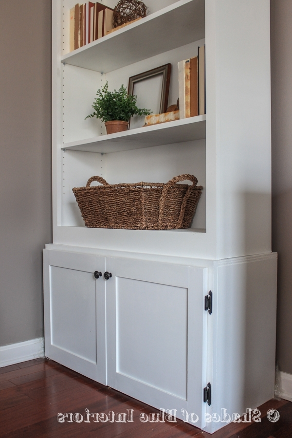 Current How To Build A Custom Cabinet Base For A Bookcase Pertaining To Bookcases Cupboard (View 6 of 15)