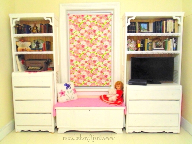 Diy Bifold Door And Dresser Bookcases – Thrifty Rebel Vintage Inside Most Up To Date Bifold Bookcases (View 7 of 15)