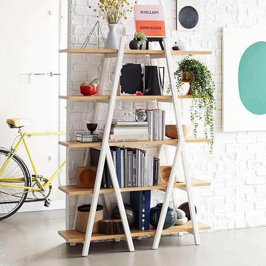 Famous Ladder Bookcases Throughout Building Ladder Bookcase (View 10 of 15)