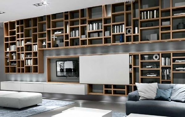 Fashionable Design A Bookcases For Small Hanging Bookcases Design And Hanging Place For Lcd (View 6 of 15)