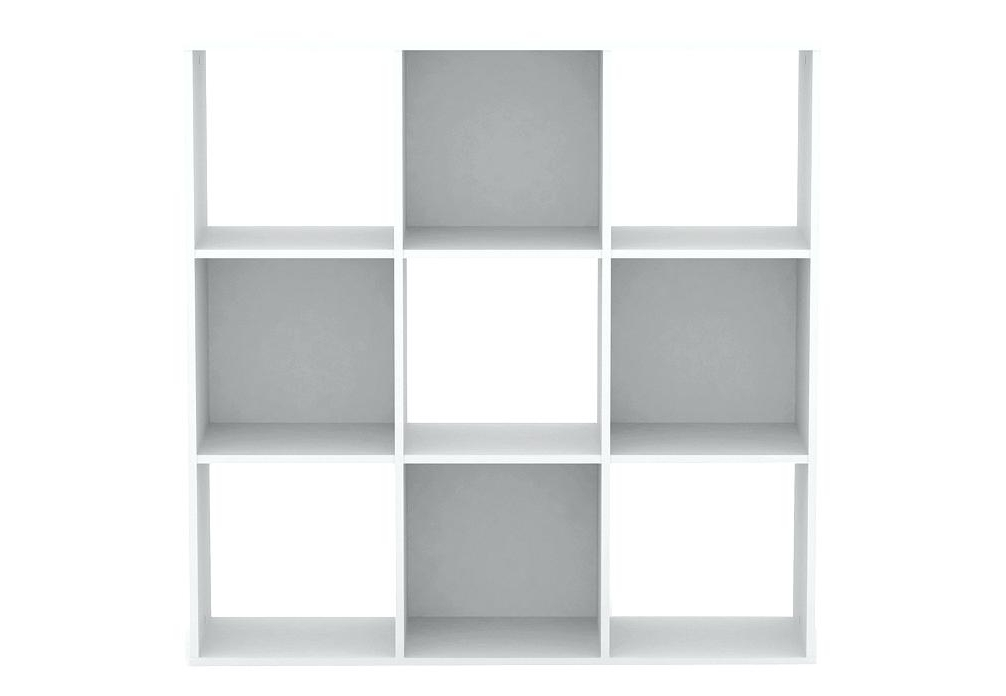 Flat Pack Bookcases Flat Pack Bookcases Nz – Ellenberkovitch (View 6 of 15)