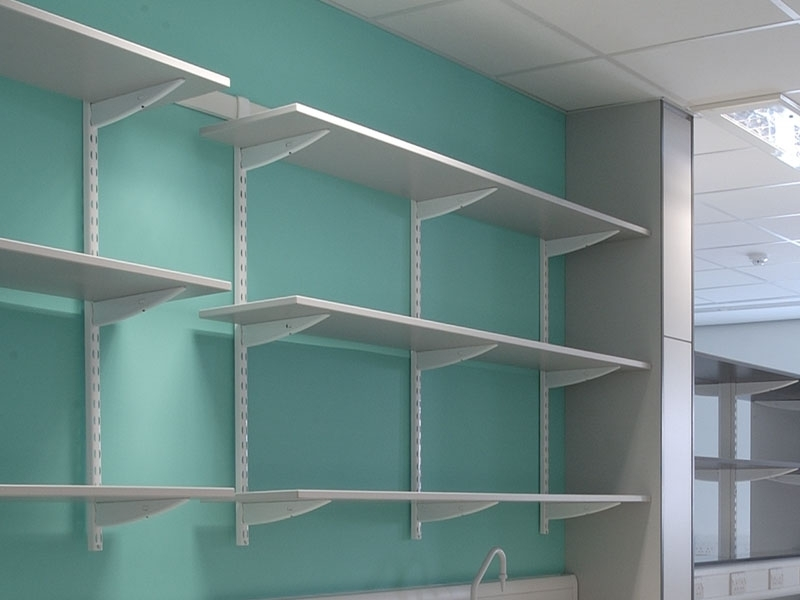 Home Shelving Systems Regarding Most Up To Date Build Storage Shelves Design And Style (View 8 of 15)
