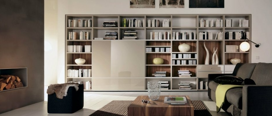 Indian Wall Unit Designs Sitting Room Shelf Wall Storage Systems Intended For Newest Sitting Room Storage Units (View 6 of 15)
