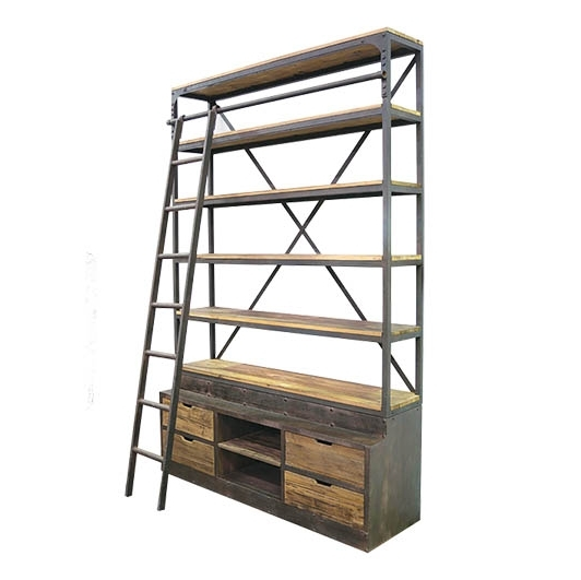 Industrial Bookcases Within Trendy Industrial Bookcase With Ladder (View 7 of 15)