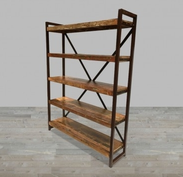 Iron And Wood Bookcases Within Well Known Bookcases – Living Room (View 9 of 15)