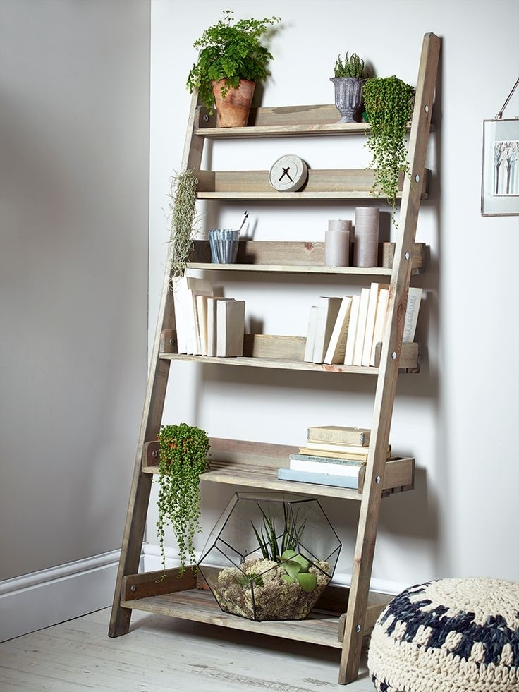 Featured Photo of Ladder Bookcases