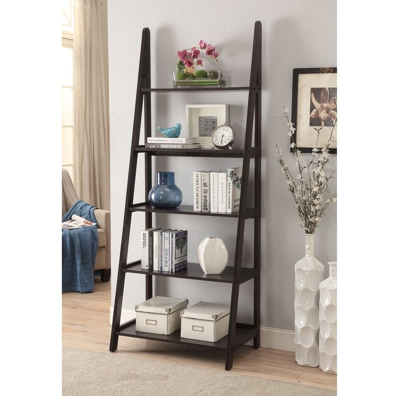Ladder Shelves With Newest Homestyle Collection Linden Ladder Bookcase & Reviews (View 10 of 15)