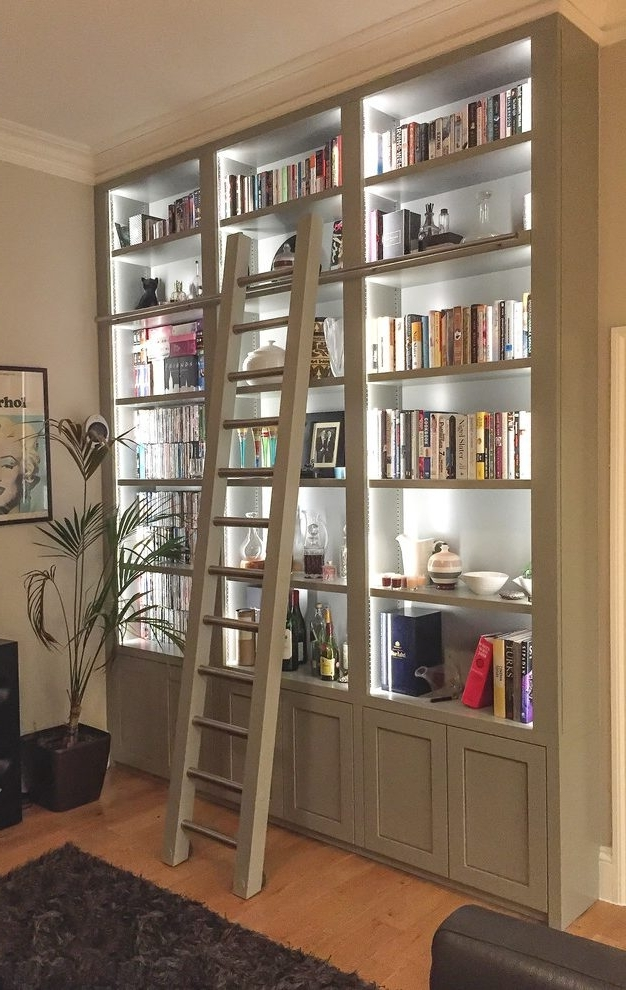 Library Bookcases Lighting For Trendy Contemporary Shelves And Bookcases Family Room Transitional With (View 7 of 15)