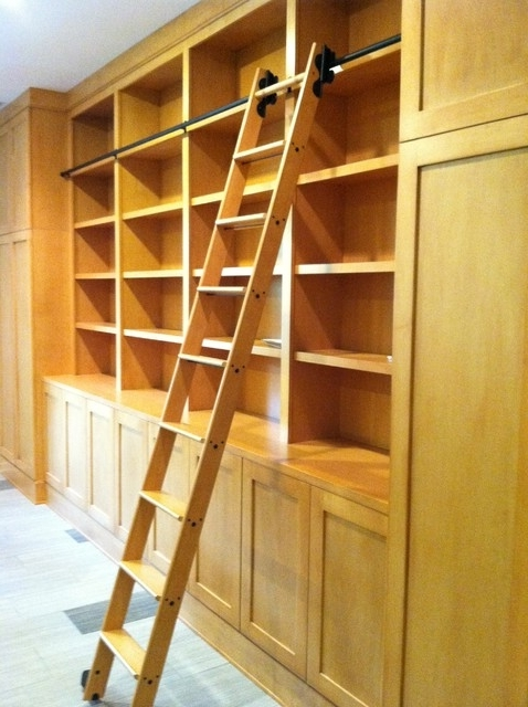 Library Cabinets With Rolling Library Ladder – Modern – Family Intended For Newest Rolling Library Ladder (View 7 of 15)