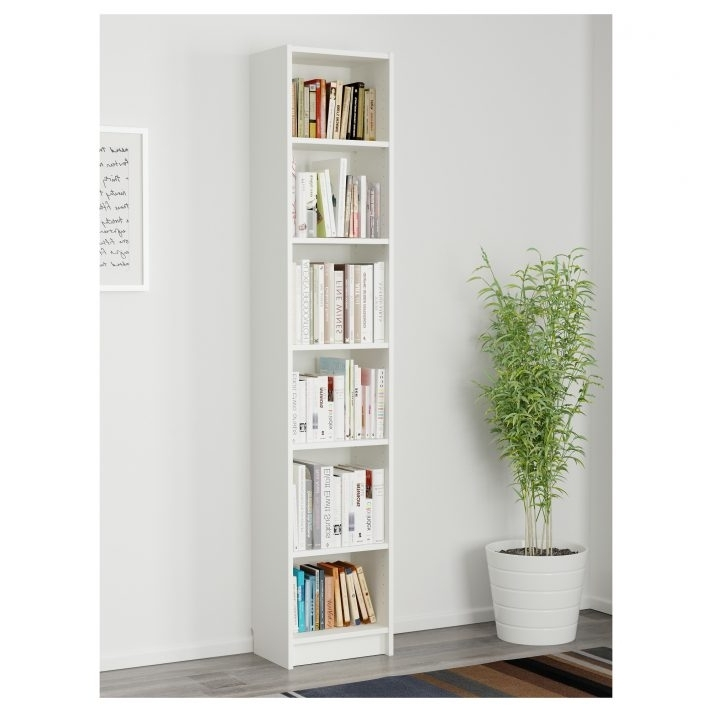 Most Popular Bookcase Remarkable Narrow With Doors Images Design Tall Pertaining To Narrow Bookcases (View 6 of 15)