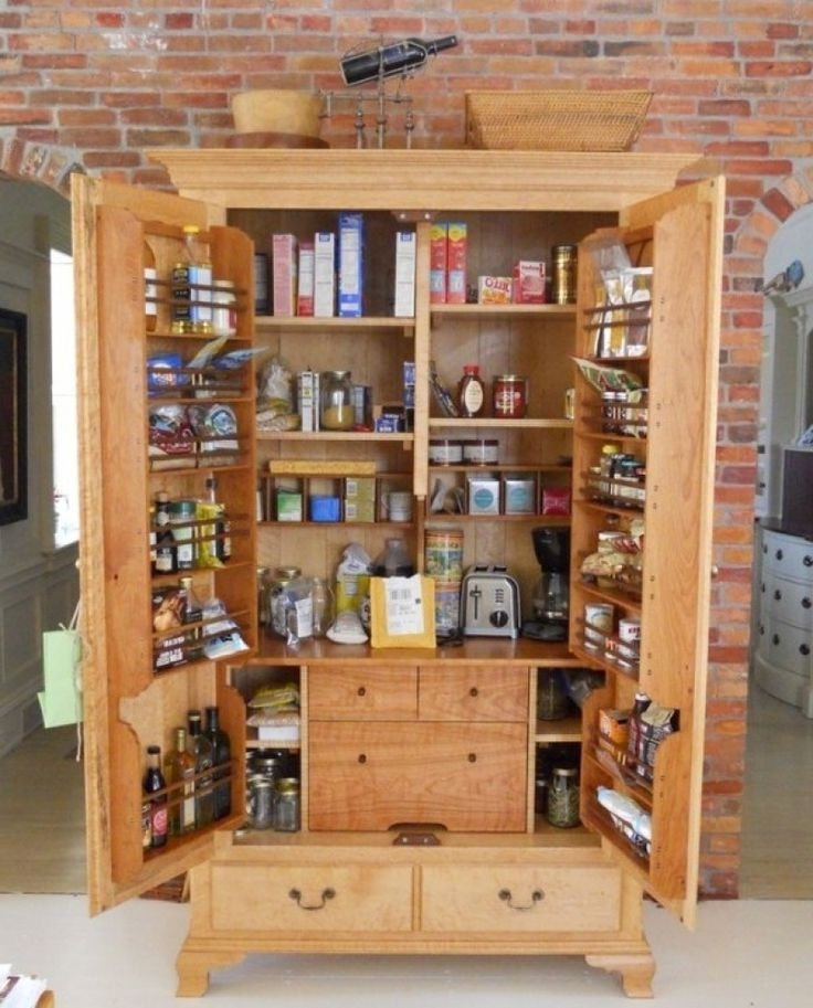Most Popular Free Standing Storage Cupboards Throughout Best 25+ Kitchen Pantry Cabinet Freestanding Ideas On Pinterest (View 11 of 15)