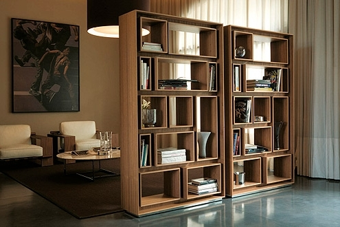 Most Recent Unique Bookcases With Unique Modern Bookcases For A Chic Interior (View 6 of 15)