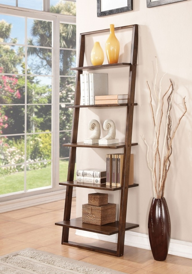 Most Recently Released Beautiful Looking Bookcase Designs In Leaning Bookcases (View 10 of 15)