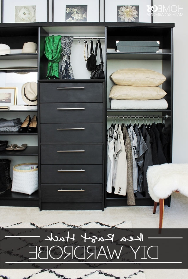 Popular Wardrobes Drawers And Shelves Ikea With Wardrobe Hack (View 9 of 15)