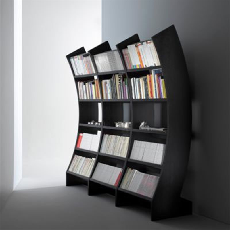 Preferred Modern Bookcases For Contemporary And Ergonomic Factor Bookcases Design Ideas For Home (View 11 of 15)
