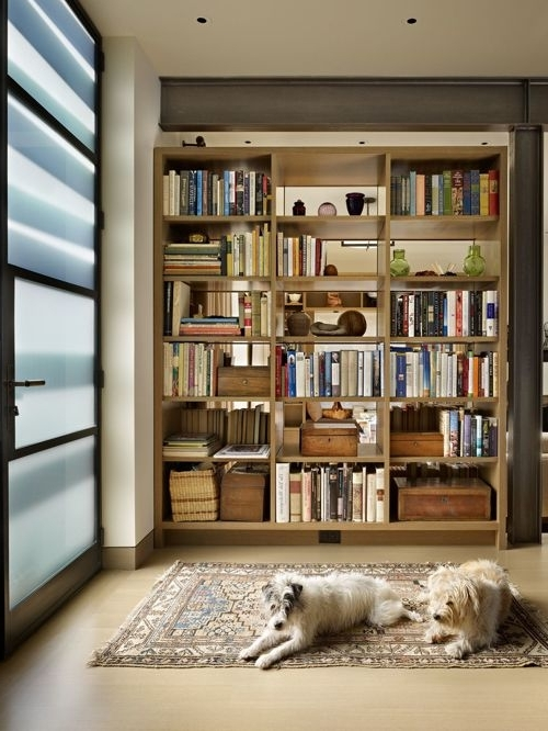 Room Divider Bookcases Inside 2018 Bookshelf As Room Divider Houzz Bookcase Room Dividers – Home (View 11 of 15)