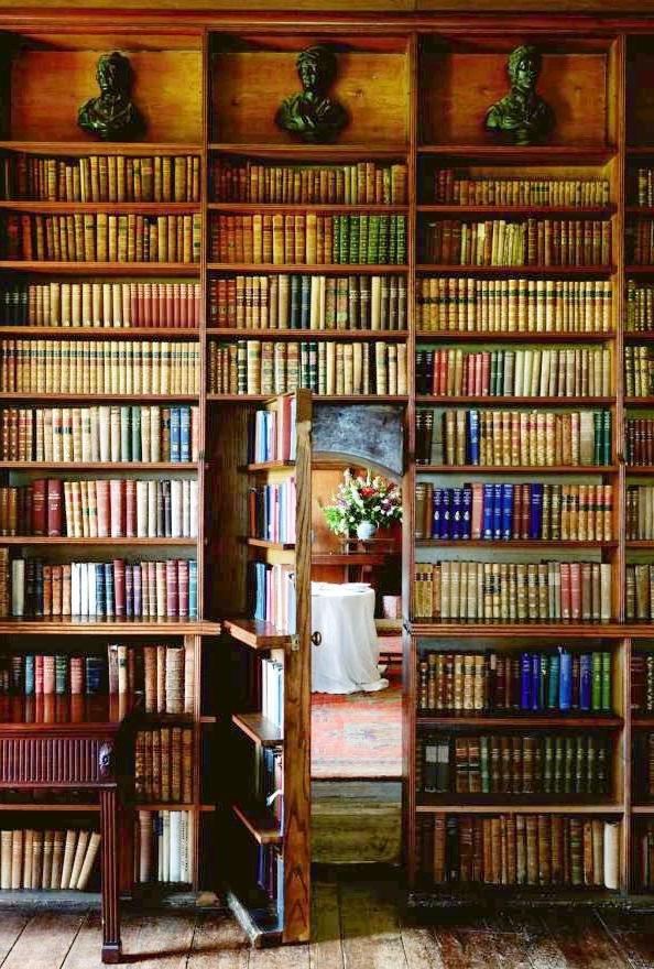 Secret Door Bookcases Pertaining To Newest Secret Door Bookshelf Shared Httpwwwbookcoverideas Secret Door (View 11 of 15)