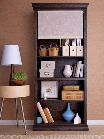 Shade On Bookcase – Love This Idea! Great If You're Using The Pertaining To Recent Bookcases Cover (View 11 of 15)