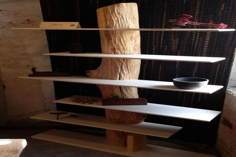 Tree Bookcases With Regard To Well Known Tree Trunk Bookcases : Antoniazzi (View 13 of 15)