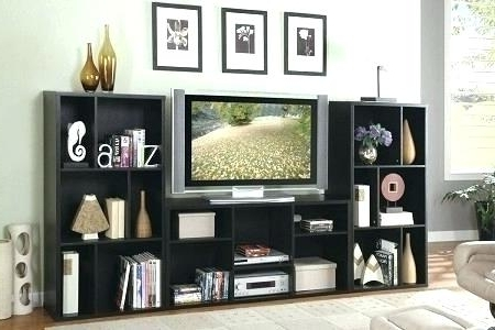 Trendy Bookcases With Tv Unit Pertaining To Bookcase Tv Unit – Hercegnovi (View 7 of 15)