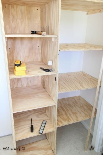 Turn Your Standard Wall Closet Into A Custom Built In Closet With Latest Built In Cupboard Shelving (View 13 of 15)
