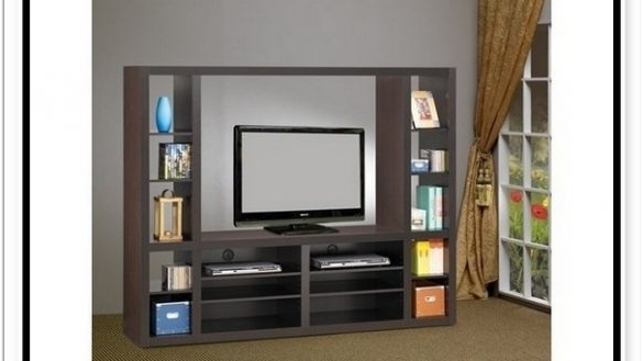 Tv Bookcases Combination With Regard To Best And Newest Incredible Bookcase Tv Stand Combo Fraufleur Tv Stand Bookcase (View 11 of 15)