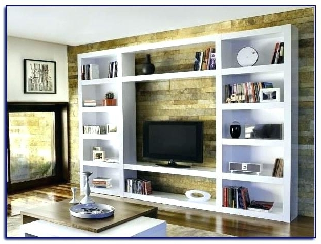Featured Photo of Tv Bookcases Combination