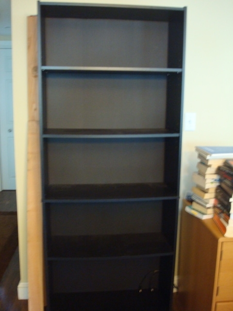 Walmart Bookcases Intended For Popular Betsy & Orion: How To Reinforce Your Crappy Bookcase (View 13 of 15)
