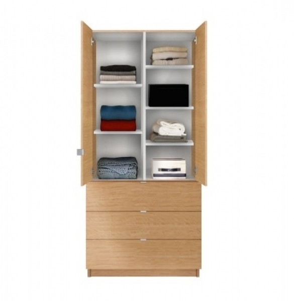 Wardrobe Designs Furniture Pertaining To Wardrobes With Drawers And Shelves (View 5 of 15)