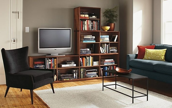 Well Known Amazing Living Rooms : Tv Stands 2017 Stunning Design Bookshelf Regarding Tv Stand Bookcases Combo (View 12 of 15)