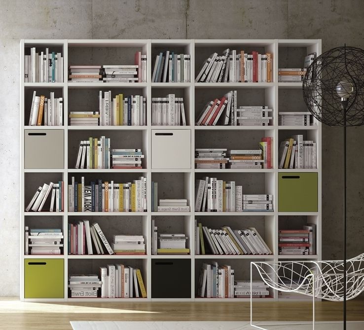 Well Known Wall Storage Units Wall Units Extraordinary Wall Units For Storage Within Wall Storage Units (View 15 of 15)