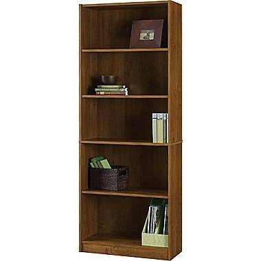 Well Liked 10 Cheap Bookshelves (That Are Actually Pretty Nice) With Cheap Bookcases (View 15 of 15)