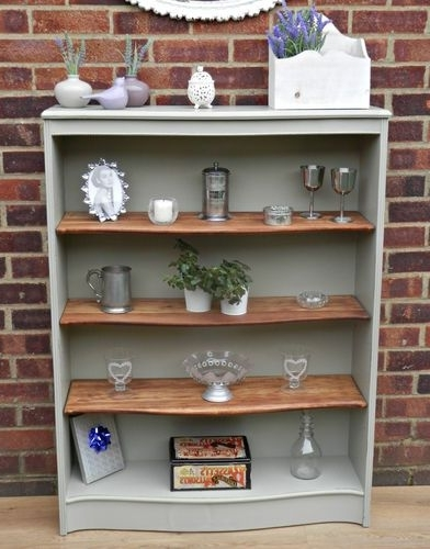 Widely Used Painted Bookshelves Intended For Lovely Vintage Shabby Chic Painted Bookcase F&b (View 15 of 15)