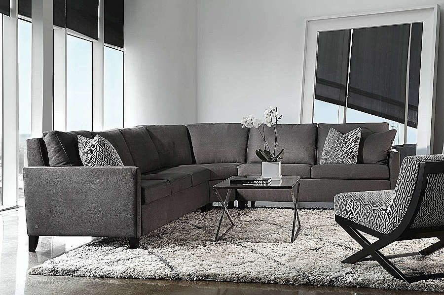 2018 Panama City Fl Sectional Sofas In Sofa Sleeper Unique Sectional Sleeper Sofa For Small Spaces Hi Res (View 1 of 10)