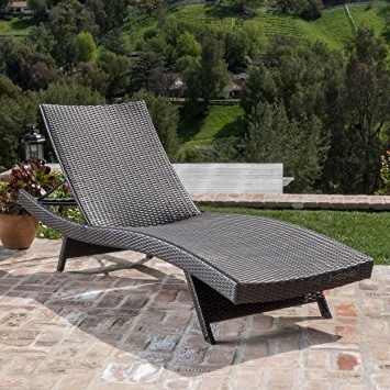 Best And Newest Amazon : Christopher Knight Home 234420 Salem Patio Chaise Inside Keter Chaise Lounge Chairs (View 13 of 15)