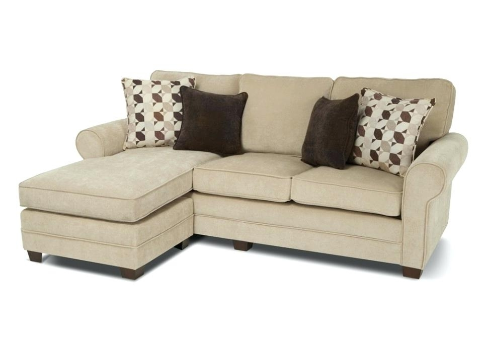 Chaise Sleepers With Most Up To Date Sectional Sleepers With Chaise Leather Sectional Sleeper Sofa (View 4 of 15)
