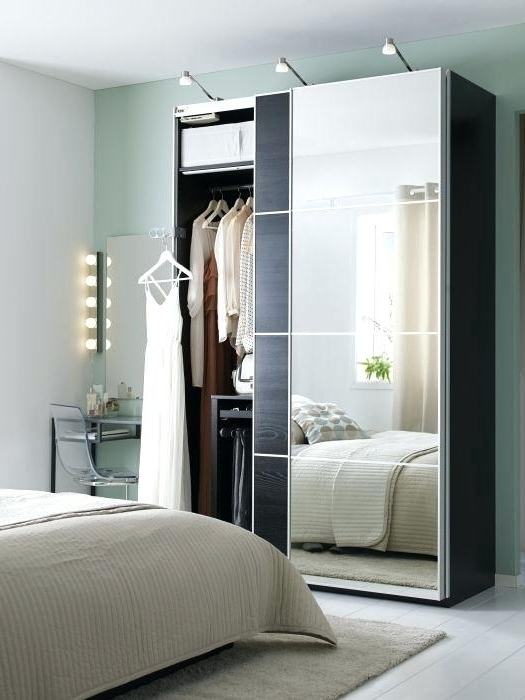 Cheap Mirrored Wardrobes Inside Best And Newest Ikea Wardrobe Closet Best Cheap Wardrobes Ideas On Makeup Yourself (View 15 of 15)