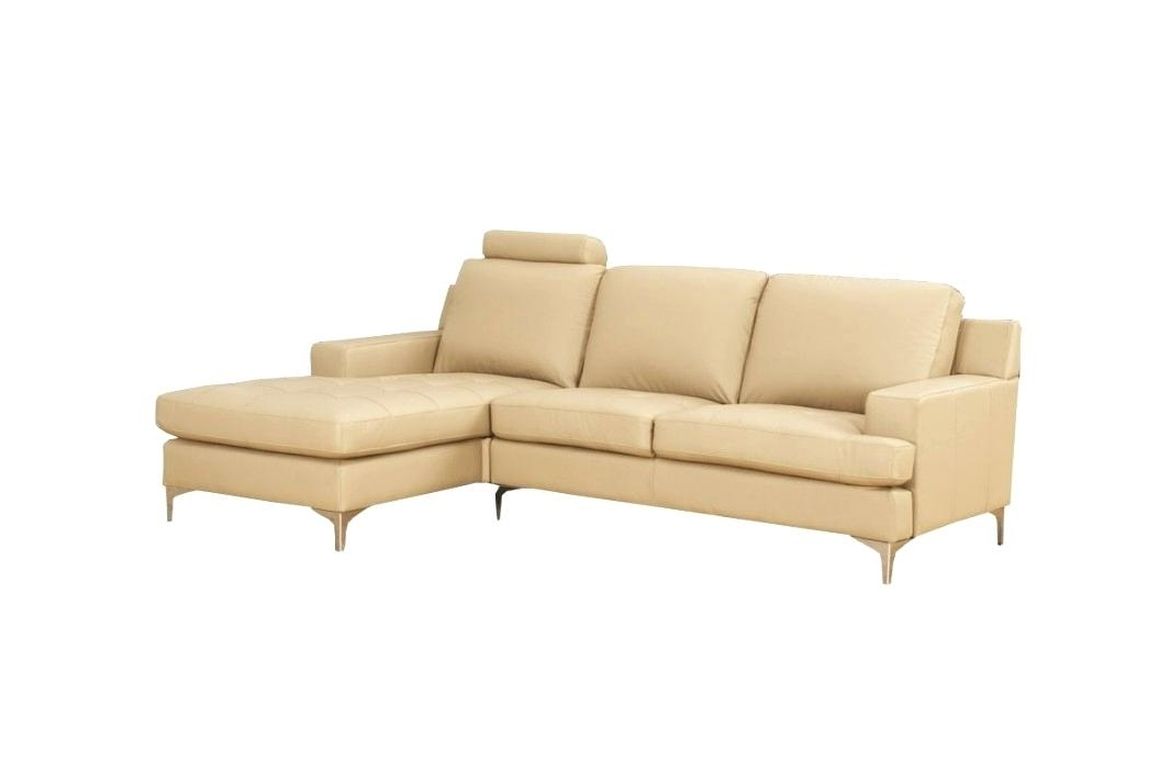 Couches With Chaise Lounge – Veneziacalcioa5 Intended For Newest Chaise Couches (View 8 of 15)