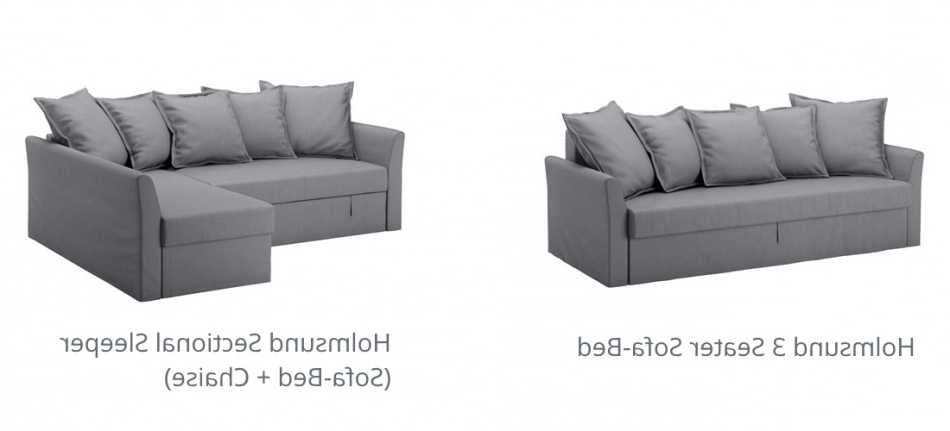 Image Gallery Of Ikea Sectional Sleeper Sofas View 7 Of 10