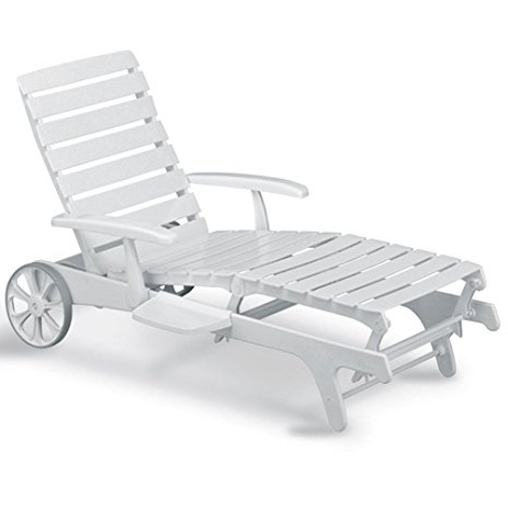 Famous Kettler Chaise Lounge Chairs Within Amazon : Tiffany Chaise Lounge : Patio Chaise Lounge Covers (View 5 of 15)